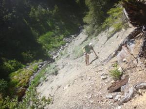 Trust me, it's a trail